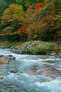 長良川 秋の渓流の写真素材 [FYI03931393]