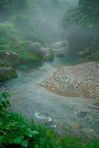 神崎川の写真素材 [FYI03931419]