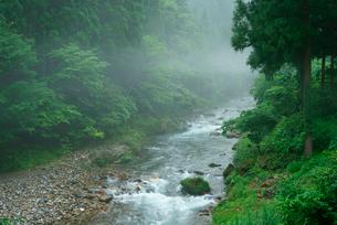 神崎川の写真素材 [FYI03931421]