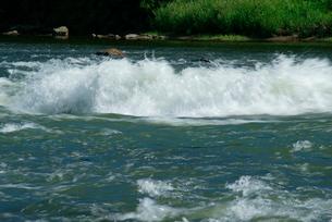 木曽川と可児川の合流点 可児合の瀬の写真素材 [FYI03931437]
