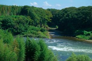 木曽川と可児川の合流点 可児合の瀬の写真素材 [FYI03931438]