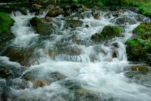 野原谷の清流 粕川との合流点 野原橋の下の写真素材 [FYI03931440]