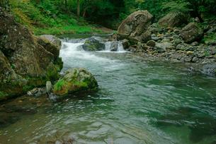 長谷川 粕川の支流の写真素材 [FYI03931444]