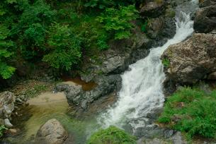粕川 揖斐川の支流の写真素材 [FYI03931445]
