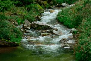 粕川 揖斐川の支流の写真素材 [FYI03931446]