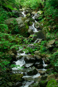 粕川の上流部 国見岳スキー場付近の写真素材 [FYI03931449]