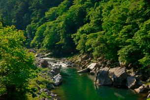 飛騨川 国道41号線の三原大橋より上流を望む の写真素材 [FYI03931484]