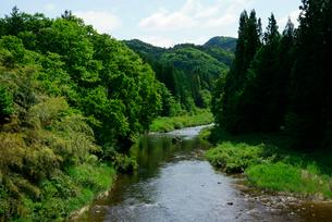 飛騨川 大橋より上流を望む の写真素材 [FYI03931499]