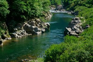 飛騨川下流を望むの写真素材 [FYI03931525]