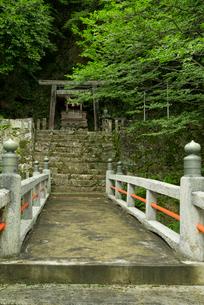 上有知湊 長良川 の住吉神社の写真素材 [FYI03931830]