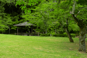 小倉山城 本丸跡の写真素材 [FYI03931832]