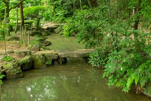 小倉山城 本丸の庭園の写真素材 [FYI03931833]