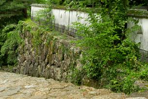 小倉山城 本丸門跡より本丸西櫓跡を見るの写真素材 [FYI03931835]