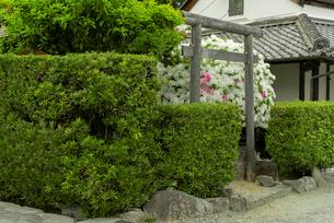 松坂城 南龍神社と米蔵の写真素材 [FYI03931904]