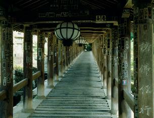 長谷寺の登廊の写真素材 [FYI03931906]