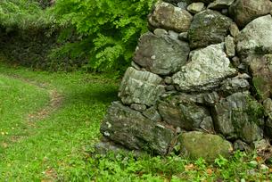 田丸城 本丸 奥右側 と北の丸を遮る堀と石垣の写真素材 [FYI03931911]