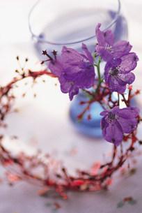 花の写真素材 [FYI03932110]