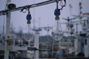 漁船の電灯の写真素材 [FYI03932170]