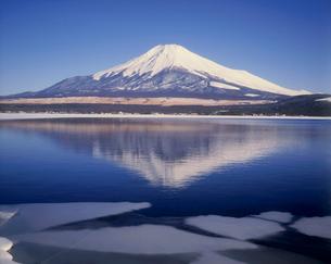 富士山と山中湖の写真素材 [FYI03932495]