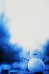 雪だるまの写真素材 [FYI03933038]