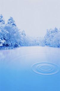 樹氷と水紋イメージの写真素材 [FYI03933050]