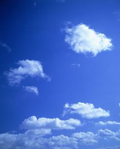 空の写真素材 [FYI03933400]