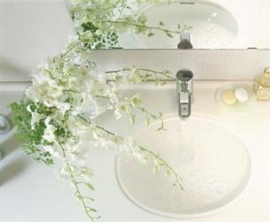 洗面所の写真素材 [FYI03933528]