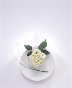 花の写真素材 [FYI03933595]
