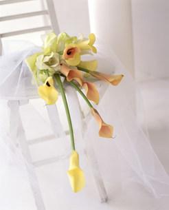 花の写真素材 [FYI03933601]