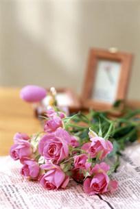 花の写真素材 [FYI03933602]