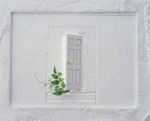 ドアの写真素材 [FYI03933724]