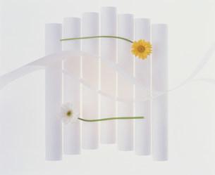 花の写真素材 [FYI03933762]