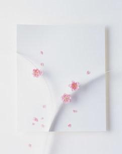 花の写真素材 [FYI03933763]