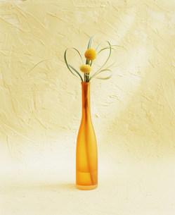 花瓶の花の写真素材 [FYI03933858]