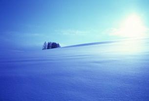 雪原の写真素材 [FYI03933916]