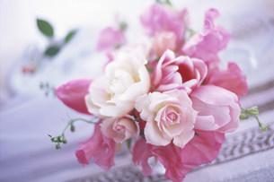 花の写真素材 [FYI03933922]