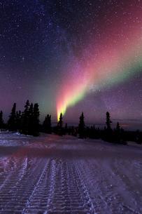 アラスカ フェアバンクスのチェナ山頂から見たオーロラの写真素材 [FYI03936533]