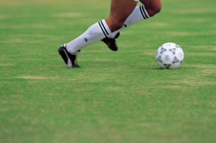 サッカーの写真素材 [FYI03937584]
