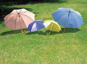 傘の写真素材 [FYI03937654]