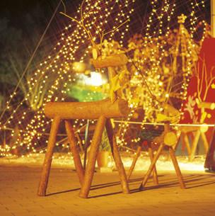 クリスマスイルミネーションの写真素材 [FYI03938163]