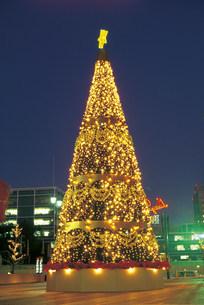 クリスマスツリーの写真素材 [FYI03938232]