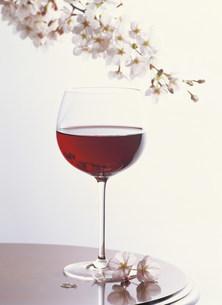 サクラとワインの写真素材 [FYI03938435]