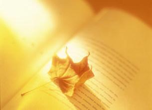 本と枯れ葉の写真素材 [FYI03938716]