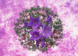 花のイメージの写真素材 [FYI03939153]