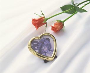 花のイメージの写真素材 [FYI03939157]