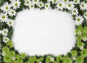 花で作った額縁の写真素材 [FYI03939159]