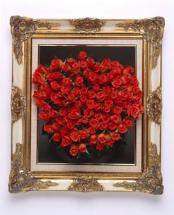 額縁の中の花のイメージの写真素材 [FYI03939167]