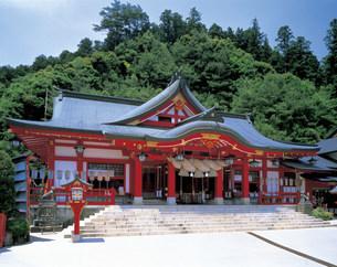 太鼓谷稲荷神社の写真素材 [FYI03940376]