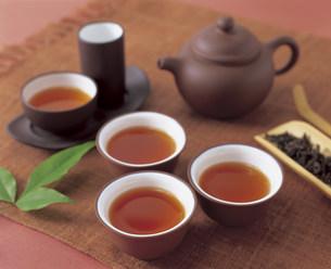 鉄観音茶の写真素材 [FYI03941305]