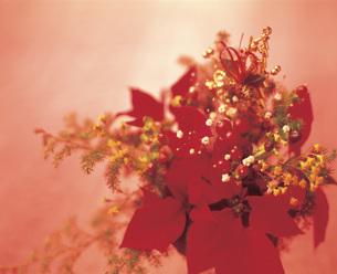 クリスマスアレンジされた花の写真素材 [FYI03941640]
